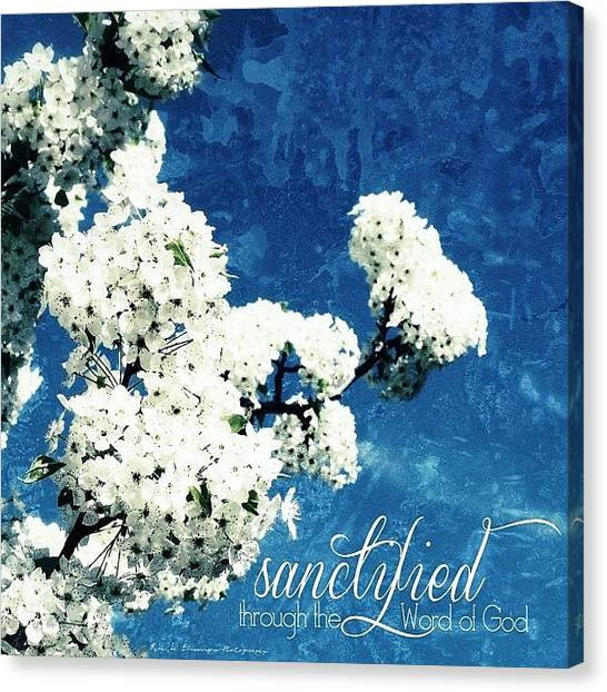 Bloom Canvas Print -    Sanctified {through The Word Of God} by Traci Beeson