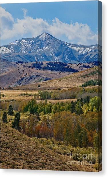 Canvas Print featuring the photograph  Sierras Mountains by Mae Wertz