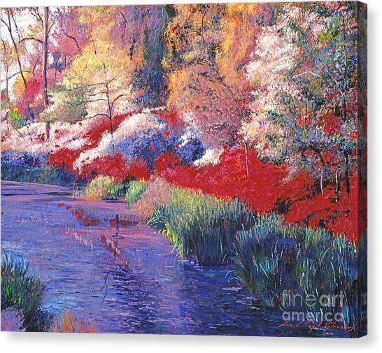 Spring Azalea Reflections Canvas Print by David Lloyd Glover
