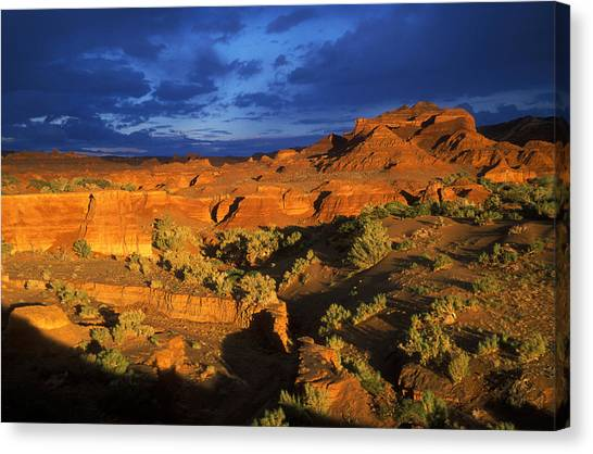 Sandy Desert Canvas Print -  The Gobi by Anonymous