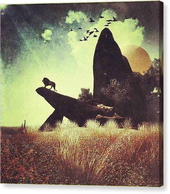 Sparrows Canvas Print - | The Lion King |  Sorry People But I by Cameron Jack Sparrow