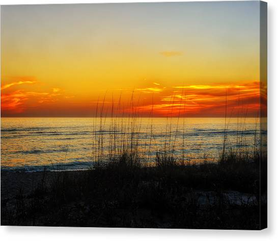 Southwest Florida Sunset Canvas Print - Sunset And Sea Oats On The Florida Gulf Coast by Frank J Benz