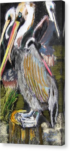 090914 Pelicans Canvas Print