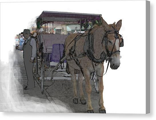 091614 Color Pencil Mule And Carriage Canvas Print