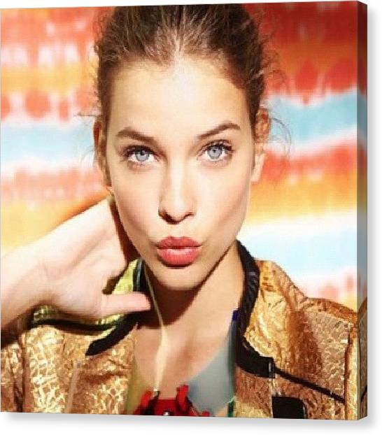 Small Mammals Canvas Print - [ #barbarapalvin #amazing #cute by The Girl Who Loves Pandas