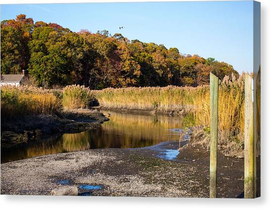 Fall Foliage At Nissequogue River Canvas Print
