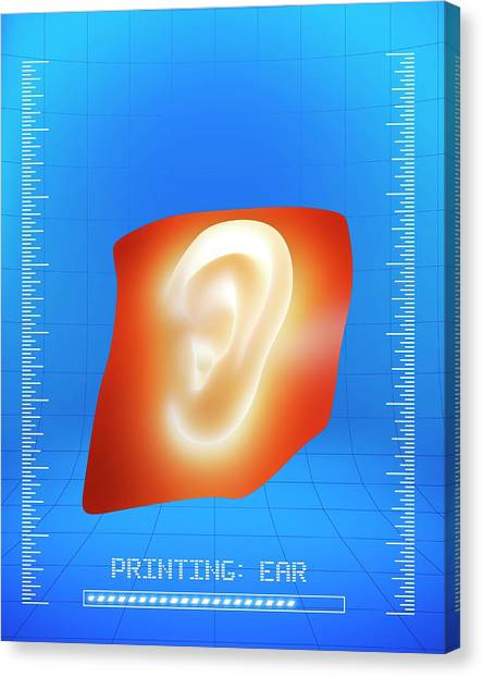 Printers Canvas Print - 3d Printing Of A Human Ear by Alfred Pasieka