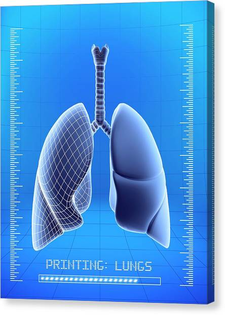 Printers Canvas Print - 3d Printing Of Human Lungs by Alfred Pasieka