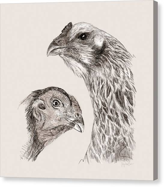 51. Game Hens Canvas Print