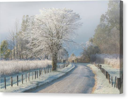 Frost Canvas Print - A Frosty Morning by Chris Moore