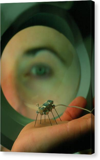 Gnats Canvas Print - A Robot 'gnat' At The Mit Robotics Lab. by Peter Menzel/science Photo Library