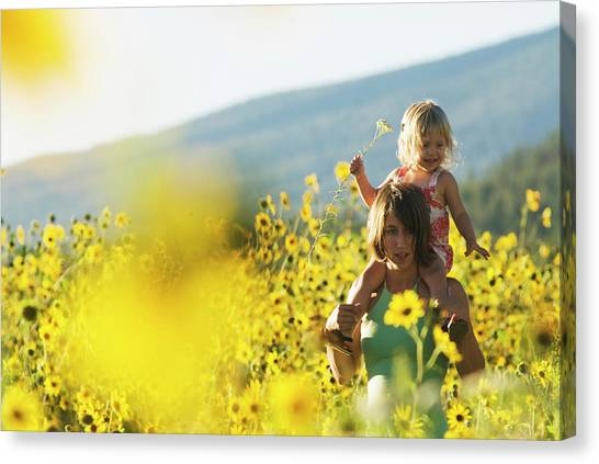 Sunflower Family Canvas Prints (Page #4 of 26) | Fine Art America
