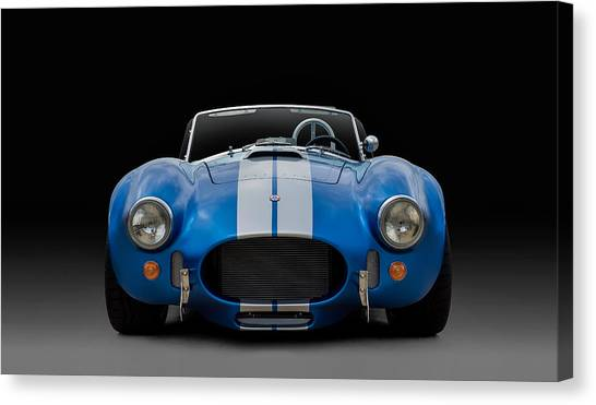 Cobras Canvas Print - Ac Cobra by Douglas Pittman