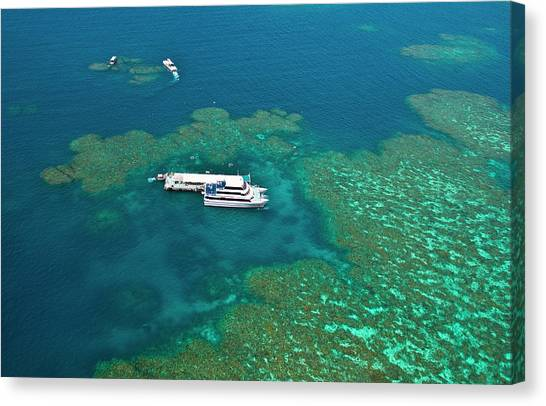 Pontoon Canvas Print - Aerial View Of A Tour Boat Docked by Miva Stock