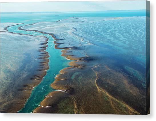 Aerial View Of Montgomery Reef Canvas Print by Laurenepbath