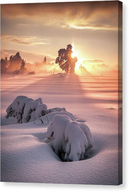 Winter Canvas Print - After The Storm by Andreas Wonisch