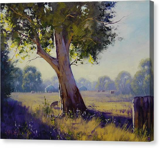 Hay Bales Canvas Print - Afternoon Light Grazing by Graham Gercken