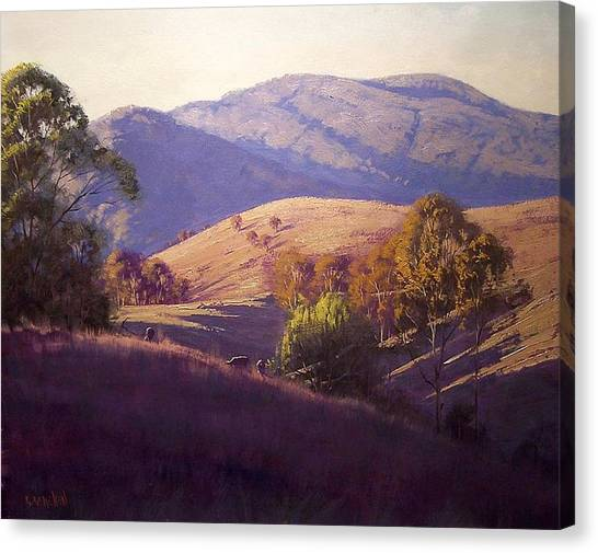 Grazing Canvas Print - Afternoon Shadows by Graham Gercken