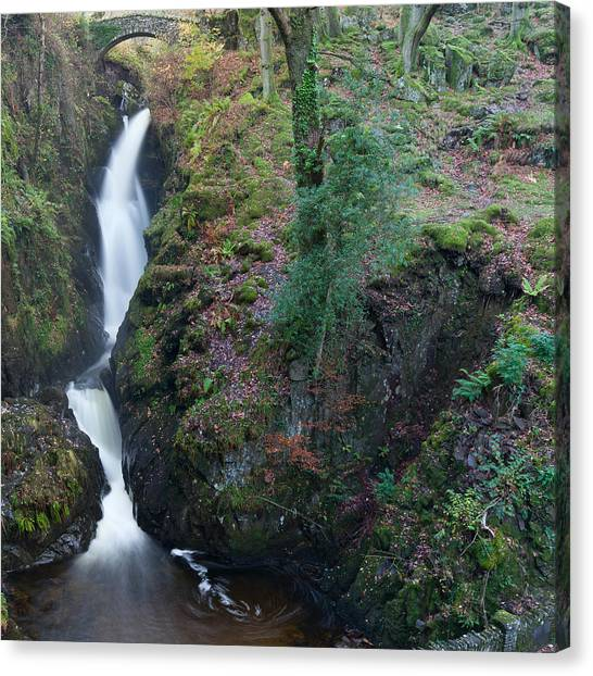 Aira Force Canvas Print by Nick Atkin