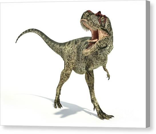 Albertosaurus Canvas Print - Albertosaurus Dinosaur On White by Leonello Calvetti