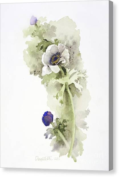 Anemone 4 Canvas Print
