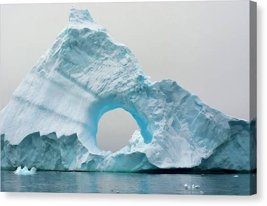 Antarctica Canvas Print - Antarctica Charlotte Bay Giant Iceberg by Inger Hogstrom