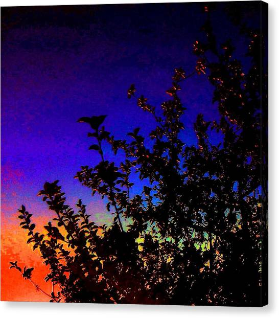 Apple Tree Canvas Print - Apple Tree Silhouette by Candy Floss Happy
