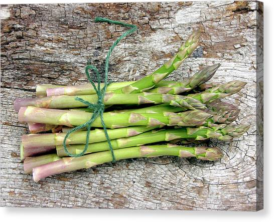 Asparagus Canvas Print - Asparagus Spears by Tony Craddock/science Photo Library