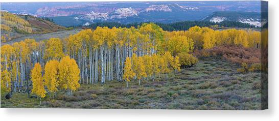 Capitol Reef Canvas Print - Aspen Trees In A Forest, Boulder by Panoramic Images