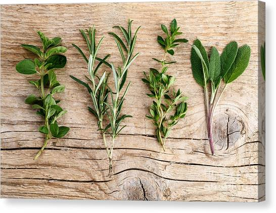 Presentations Canvas Print - Assorted Fresh Herbs by Nailia Schwarz