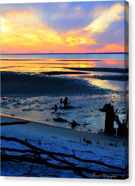 At A Days End Canvas Print