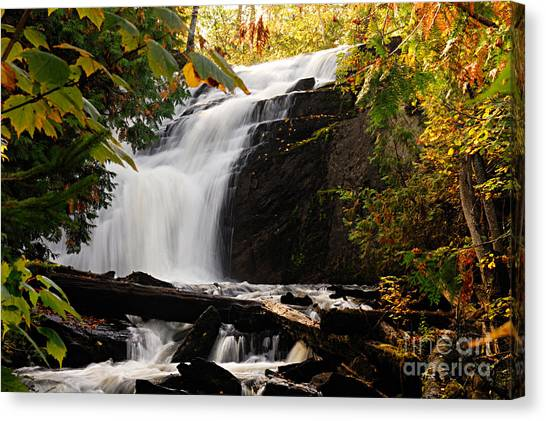 Autumn At Cattyman Falls Canvas Print