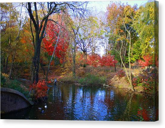 Autumn By The Creek Canvas Print