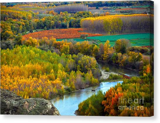 Autumn Colors On The Ebro River Canvas Print