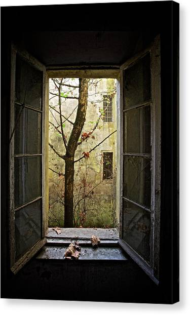 Decay Canvas Print - Autumn In Asylum by Marco Tagliarino