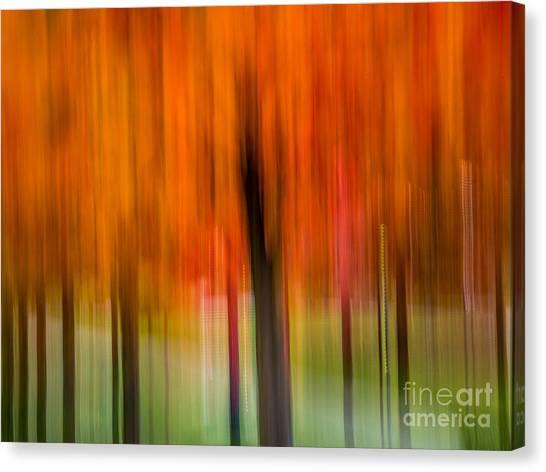 Autumn Park 2 Canvas Print
