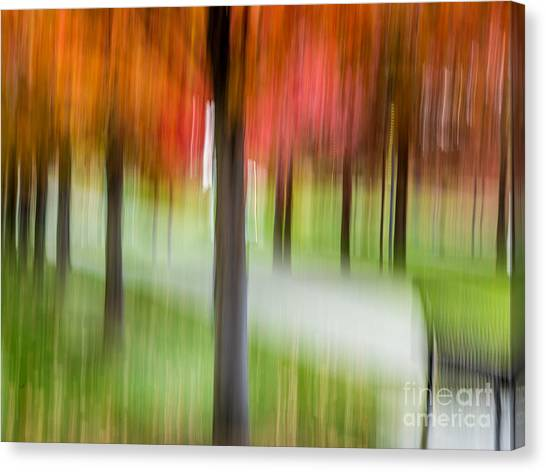 Autumn Park 3 Canvas Print