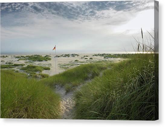 Blade Of Grass Canvas Print - Beach And German Flag, Sandbank, Near by Daniel Schoenen / Look-foto