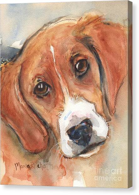Beagles Canvas Print - Beagle Dog  by Maria's Watercolor