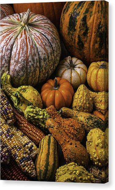 Gourds Canvas Print - Beautiful Autumn Harvest by Garry Gay