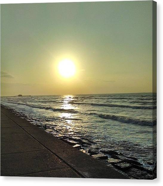 Sunny Canvas Print - Beautiful by Sunny Flowers