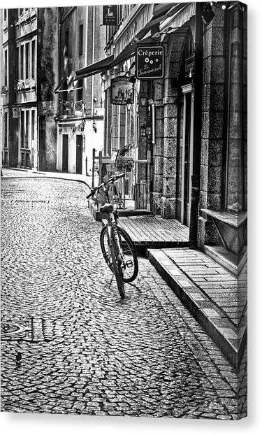 Bicycle And Sparrow 2  Canvas Print