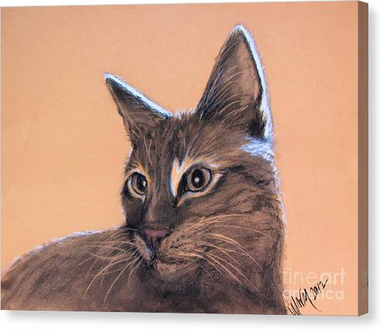 Big Kitten Canvas Print