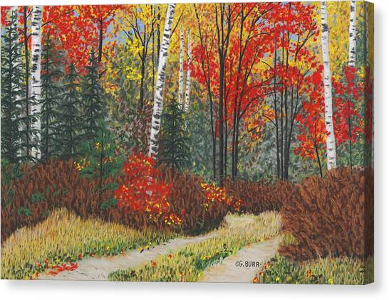 Birch Trail Canvas Print