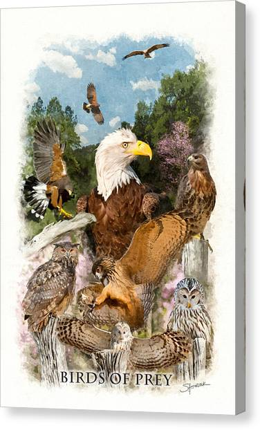 Birds Of Prey Canvas Print