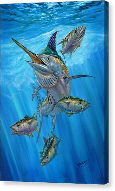 Chico Canvas Print - Black Marlin And Albacore by Terry Fox