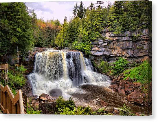 Blackwater Falls Sp Canvas Print