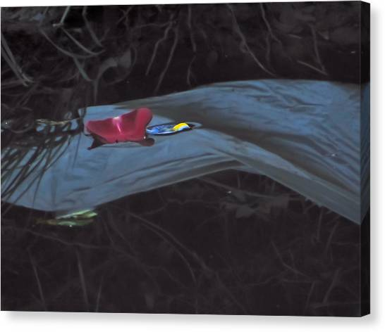 Blossom Rain 27 Canvas Print by Georg Kickinger