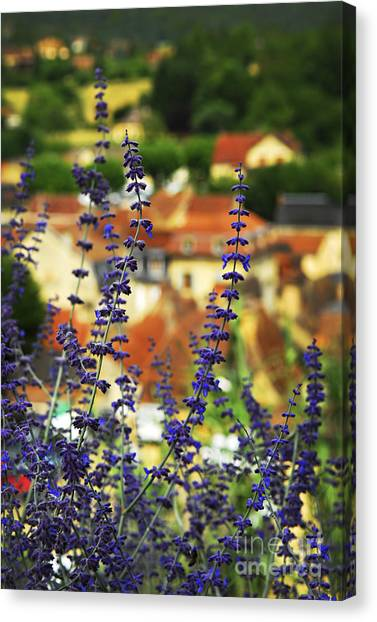 Shingles Canvas Print - Blue Flowers And Rooftops In Sarlat by Elena Elisseeva