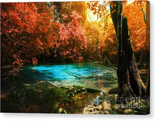 Foggy Forests Canvas Print - Blue Pool by Atiketta Sangasaeng